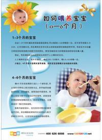 儿科图片 如何喂养宝宝