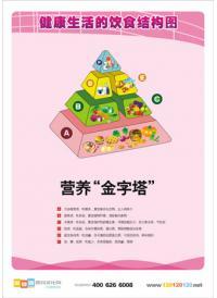 儿童医院挂图 营养金字塔