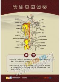 刮痧保养 刮痧的好处 刮痧知识宣传 人体穴位图 人体穴位示意图 人体脉络穴位图 人体经络穴位图 人体穴位经络图解 彩色人体穴位经络图  人体按摩穴位示意图