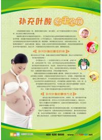妇幼保健宣传标语 补充叶酸