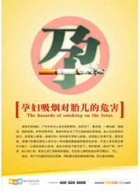 妇幼保健标语 孕妇吸烟对胎儿的危害