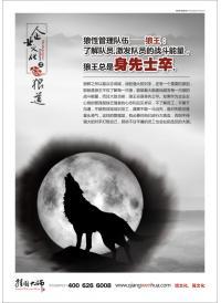 企业管理宣传海报 狼性管理队伍—狼王